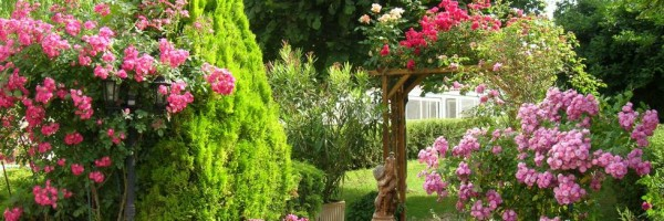 bassin-jardin-printemps