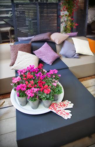 interieur-esprit-jardin